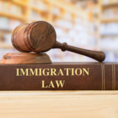 immigration defense lawyer
